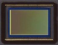 Close-up Photo of Canon EOS 70D Sensor