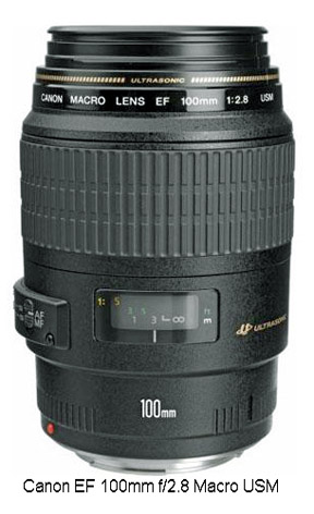 100mm f2.8 macro lens for Canon-photo