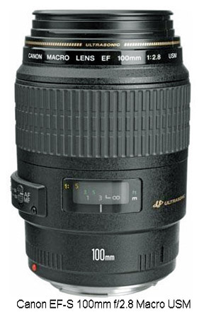 The 100mm EF-S Macro lens works great with the Canon t3i for good close-up photography