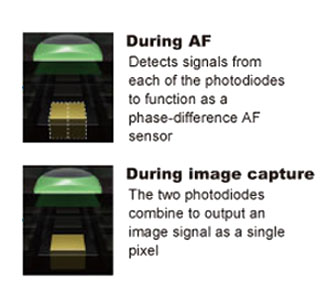 Hos Dual Pixel Auto-focus works