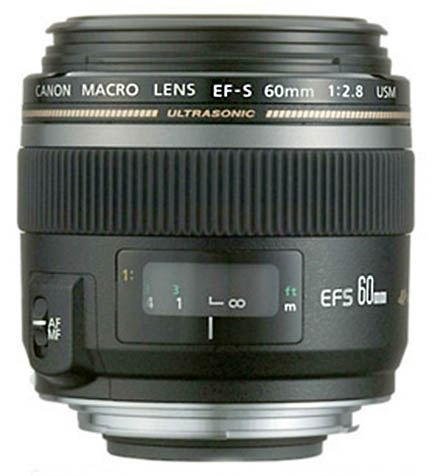 60mm beginner Canon macro lens