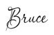 Bruce Lovelace Signature