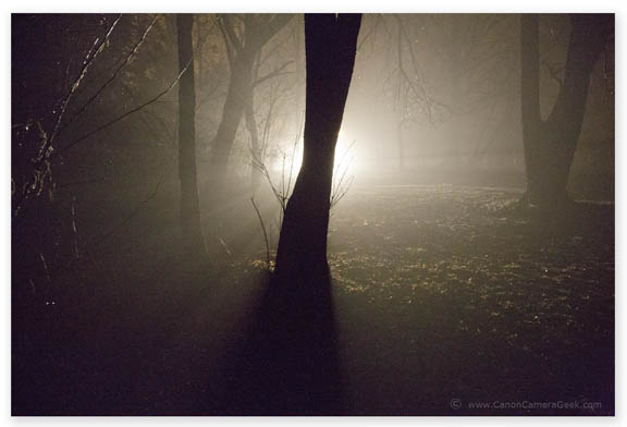 Canon 5D Mark III Night-Time Fog Scene Intelligent Mode