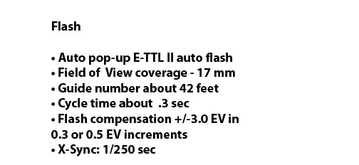 Canon 60D Flash Specs