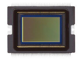 photo of Canon 70D sensor