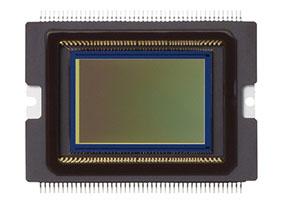 photo of Canon 70D sensor