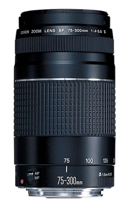 Canon 75-300 Telephoto Zoom Lens