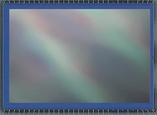 Canon Digital Camera Sensor Close-up