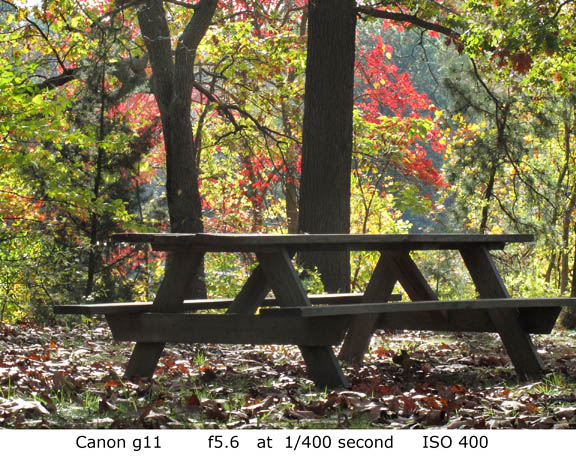 Canon g11 photo sample fall foliage