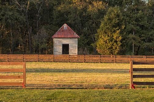 Eden, North Carolina.  Fence and sunlight