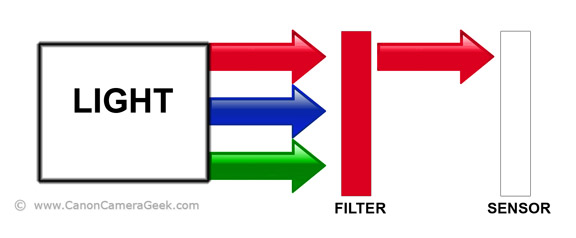 Diagram of how Canon camera filters work
