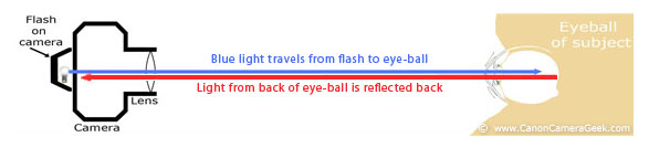 Red-Eye reflection from any on-camera flash, including the 270EX II when it is too close to the lens.