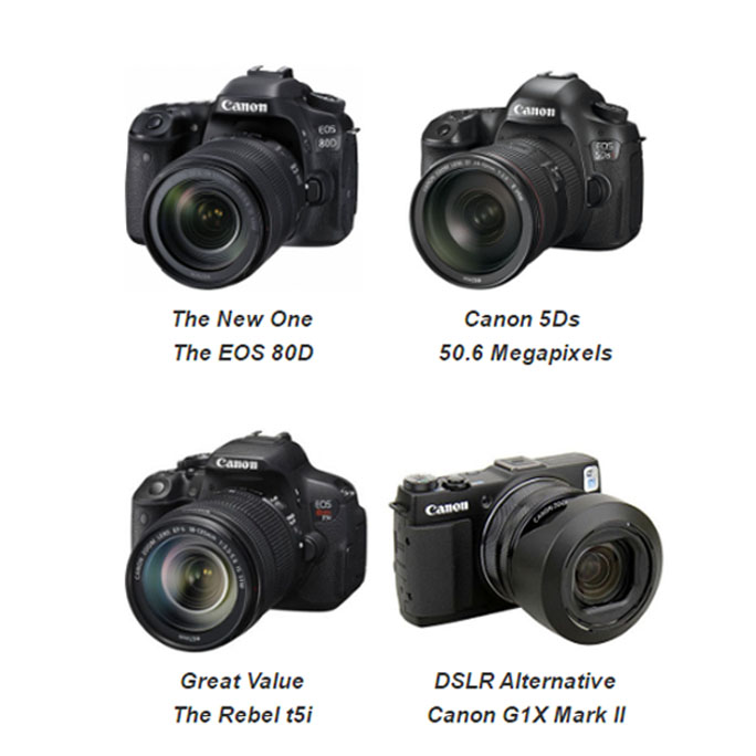 Comparison photo of 4 Best Canon DSLR Cameras