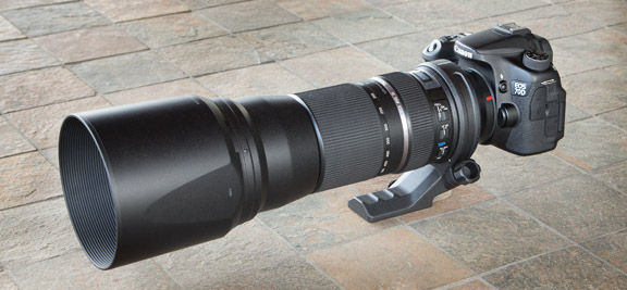 Tamron 150-600mm lens for Canon