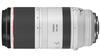 Canon RF 100-500mm Lens