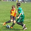 Close Action Photos