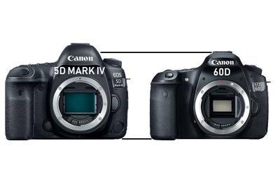 Canon 5D Mark IV vs Canon 60D Height Comparison