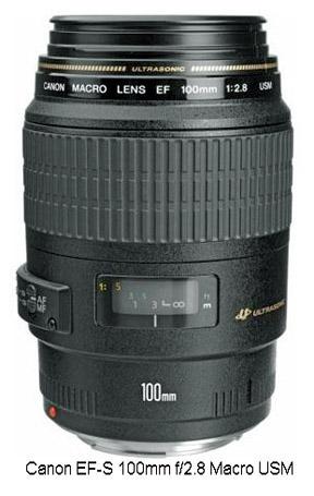 Best Canon advanced macro lens