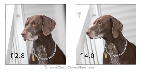 Canon 70-200 f2.8 vs f 4.0 comparison