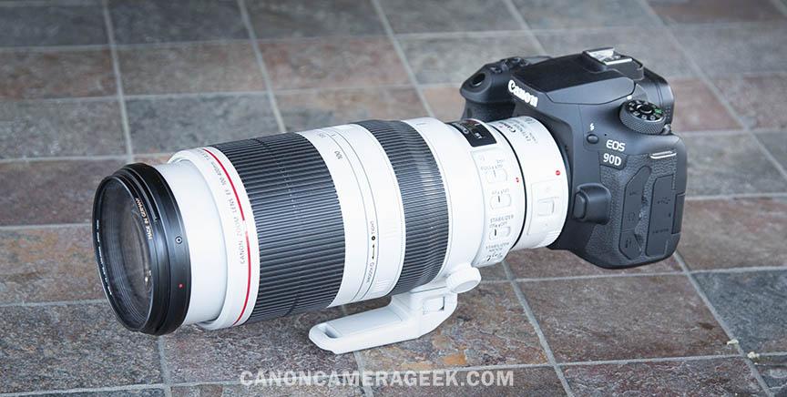 Canon 90D + 1.4X Extender + 100-400mm II Lens