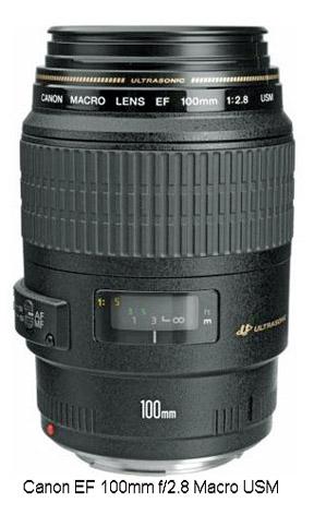 Canon 100mm f2.8 macro lens