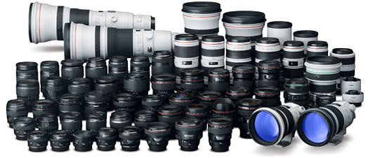 Large collection of Canon lenses.