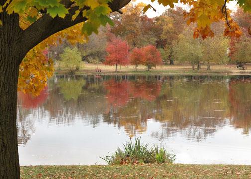 Fall colors  70D Photo 2