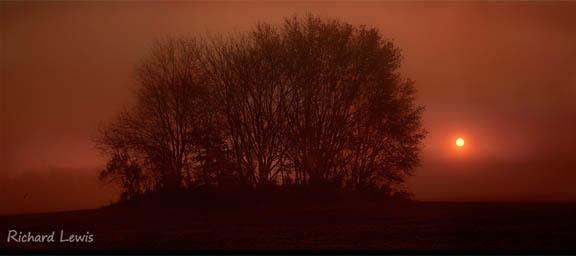 Richard Lewis Photography - Pine Barrens New Jersey Panorama
