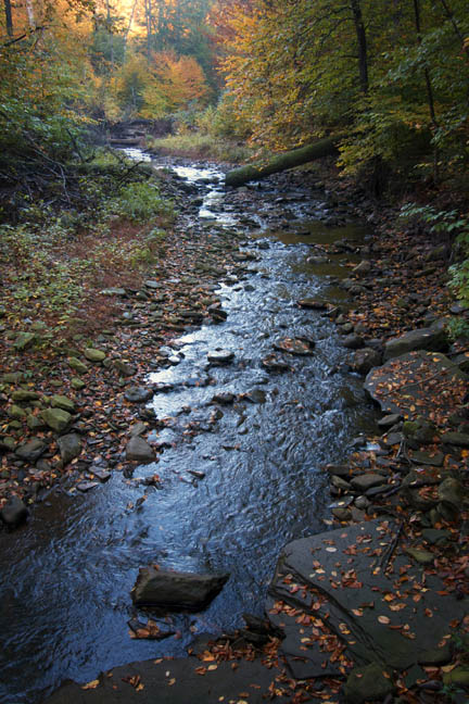 Ricketts Glen Waterfall-1 70D