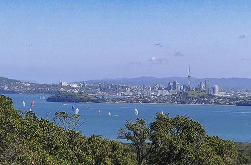 Travel New Zealand G1X Mark ii