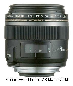 Best beginner Canon macro lens