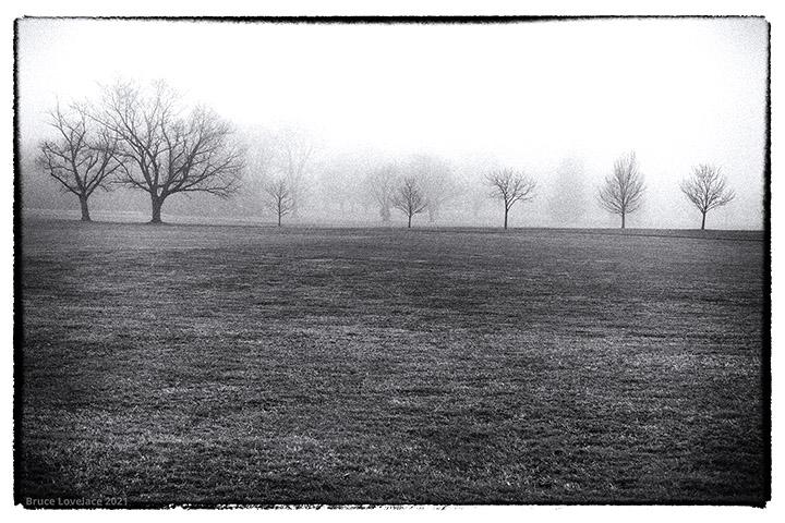 50mm landscape lens