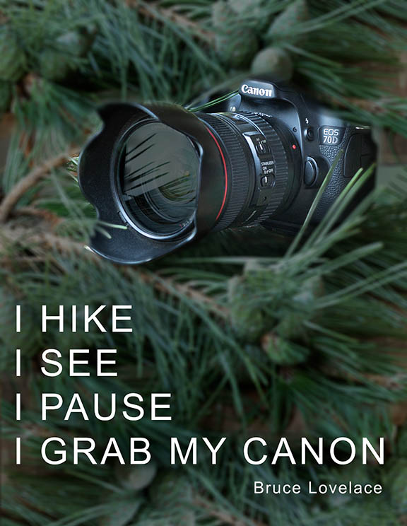Grab Canon Equipment Quote by Bruce Lovelace