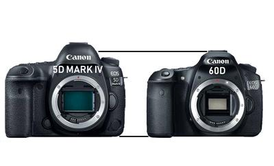 Canon 5D Mark IV vs Canon 60D Height Comparison
