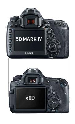 Canon 5D Mark IV vs Canon 60D Size Comparison